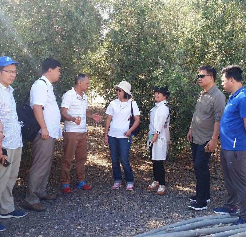 A course of irrigation and fertilization at the Galilee college for engineers from China 26/6/17